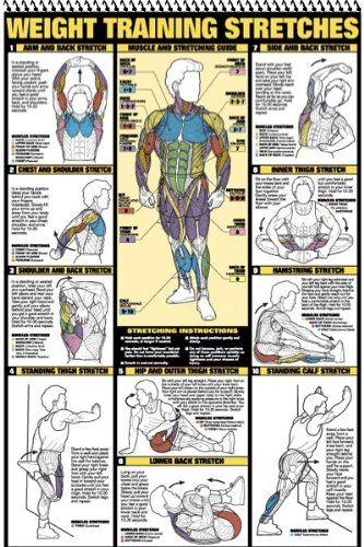 f96a8c8c784 The Best 17 Home Gym Posters to Motivate You!
